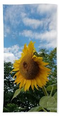 Hand Towel featuring the photograph Sun Power by Angela J Wright