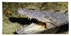 Sunbathing Croc Hand Towel