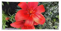 Sunbeam On Red Day Lily Bath Towel