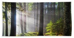 Sunbeams Along Hiking Trails Bath Towel