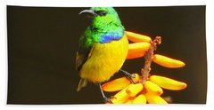 Sunbird Hand Towel by Betty-Anne McDonald