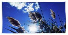 Sunburst Reeds Hand Towel