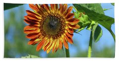 Sunflower 2016 5 Of 5 Hand Towel by Tina M Wenger