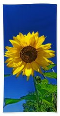 Hand Towel featuring the photograph Maize 'n Blue by Amanda Smith
