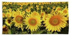 Sunflower Faces Hand Towel by Ann Bridges