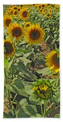 Sunflower Field Two Bath Towel