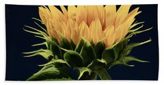 Bath Towel featuring the photograph Sunflower Foliage And Petals by Chris Berry