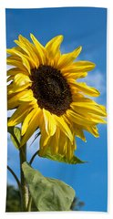 Sunflower Hand Towel by Scott Carruthers