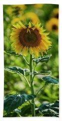 Sunflower Hand Towel