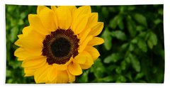 Sunflower Still Life 2 Hand Towel by Warren Thompson
