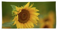 Sunflowers In Field Hand Towel