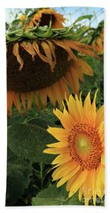 Sunflowers Past And Present Bath Towel