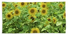 Sunflowers Standing Straight In The Sunlight. Bath Towel