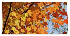 Bath Towel featuring the photograph Sunlight In Maple Tree by Elena Elisseeva