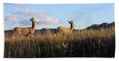 Sunlit Deer  Hand Towel