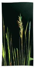 Sunlit Grasses Hand Towel