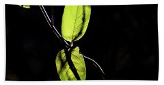 Sunlit Leaves Bath Towel by Jay Stockhaus