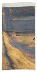 Sunlit Road Bath Towel