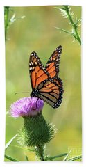 Sunlit Monarch Hand Towel