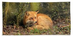 Sunning Fox Bath Towel by Debbie Green