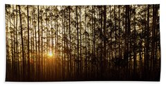 Sunset Behind Row Of Trees In Sihlouette Hand Towel