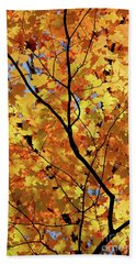 Bath Towel featuring the photograph Sunshine In Maple Tree by Elena Elisseeva