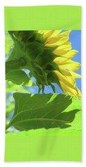 Sunshine In The Garden 19  Hand Towel by Brooks Garten Hauschild