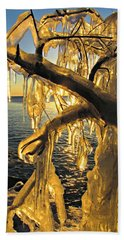 Sunshine Is Fine Hand Towel by Greta Larson Photography