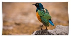 Superb Starling Hand Towel by Adam Romanowicz