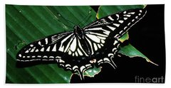 Swallowtail Butterfly- Close Hand Towel