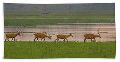 Swamp Deers Bath Towel
