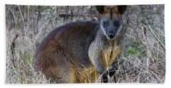 Hand Towel featuring the photograph Swamp Wallaby  by Miroslava Jurcik