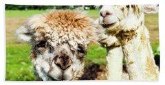 The Soft Joy Of Apacas Hand Towel