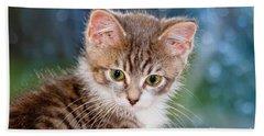 Sweet Kitten Hand Towel
