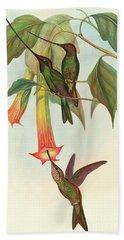 Sword Billed Hummingbird Hand Towel