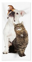 Tabby Cat And Bulldog Together Looking Up Bath Towel