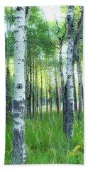 Tahoe Birch Hand Towel