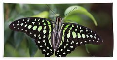 Tailed Jay Bath Towel