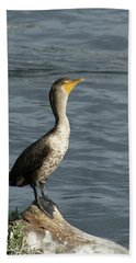 Take My Picture - Cormorant Hand Towel by Margie Avellino
