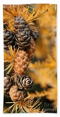 Tamarack Larch Tree In The Fall  Hand Towel