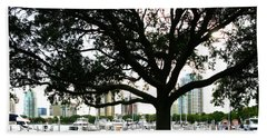 Hand Towel featuring the photograph Tampa Shoreline And Skyline Through Tree by Marilyn Hunt