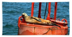 Hand Towel featuring the photograph Tanning Sea Lion On Buoy by Mariola Bitner