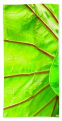 Taro Leaf Close Up In Green Hand Towel