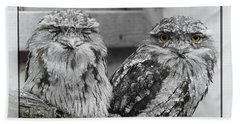 Tawney Frogmouths Hand Towel