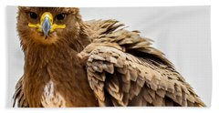 Tawny Eagle Close Up Bath Towel