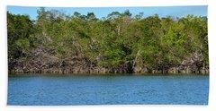 Ten Thousand Island Landscape Two Hand Towel