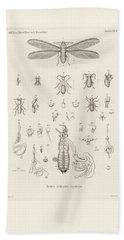 Termites, Macrotermes Bellicosus Hand Towel by H Hagen