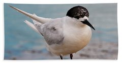 Hand Towel featuring the photograph Tern 1 by Werner Padarin