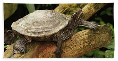 Tess The Map Turtle #3 Hand Towel