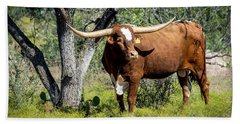 Bath Towel featuring the photograph Texas Longhorn Steer by David Morefield